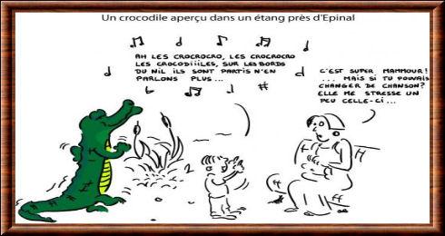 Un crocodile apercu dans un Y Avait Un Crocodile