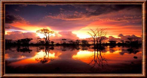 Parc national d 39 etosha - L heure du coucher du soleil aujourd hui ...