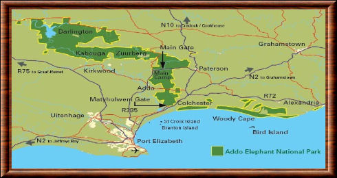 Addo Elephant carte