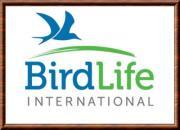 Birdlifinternational