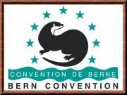 Conventionberne