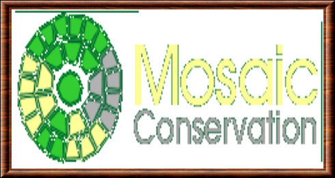 Mosaic Conservation