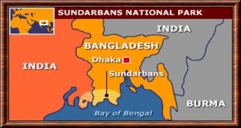 Sundarbans carte
